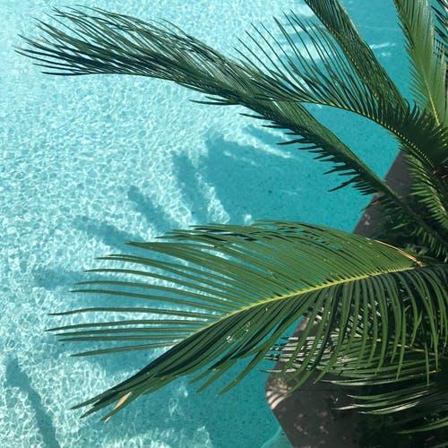 zwembad overkapping